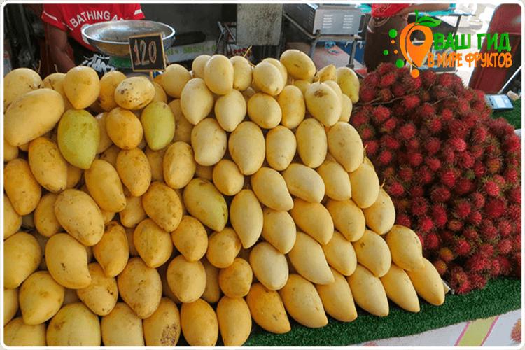 как продаётся манго