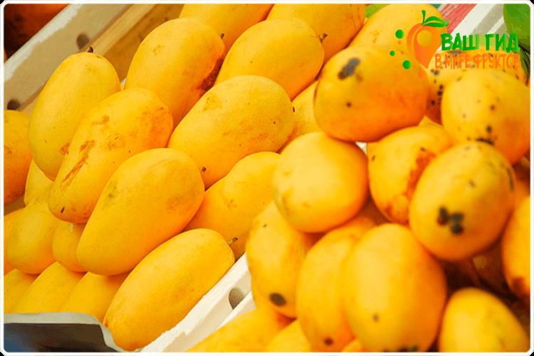 манго на прилавке
