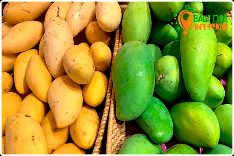 виды манго