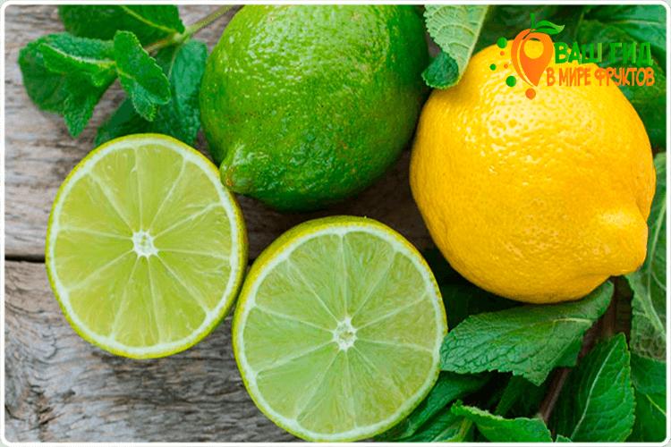 плоды лимона и лайма