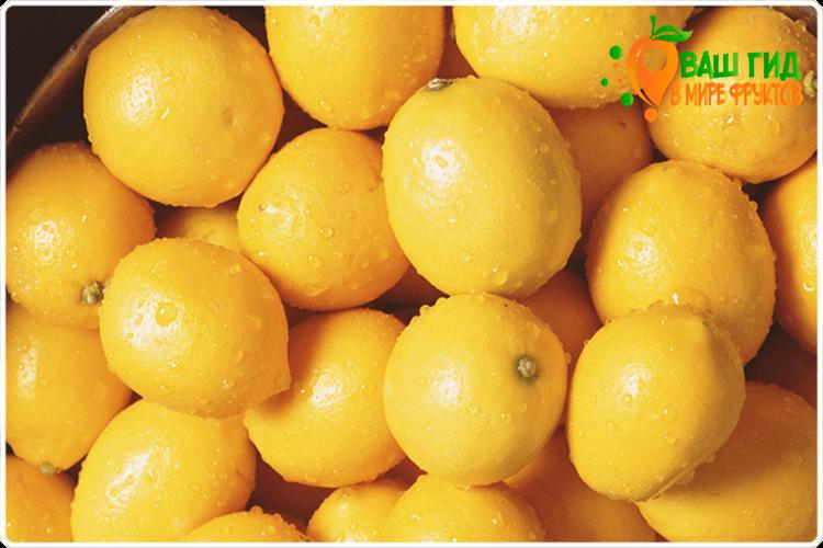 фрукты лимонов